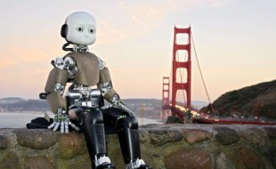 Robot companions for citizens