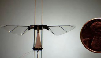 robotspodcast-a-robot-fly-at-harvard-and-the-moma